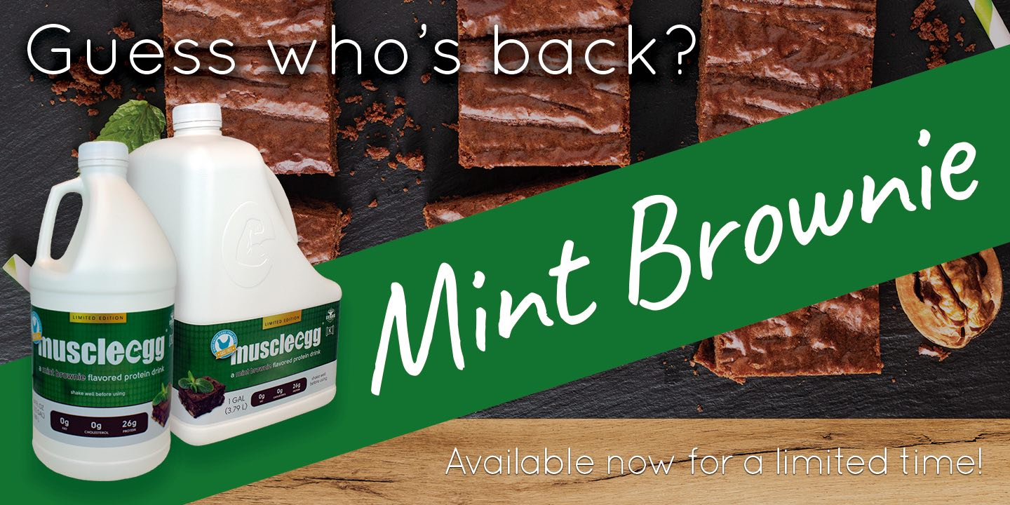 Mint Brownie is back in stock